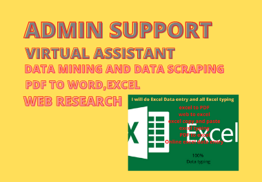 Data Entry Expert in Ms word or Excel