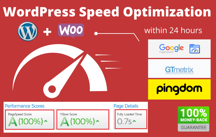 I will optimize wordpress website speed above 90 on gtmetrix,  google pagespeed
