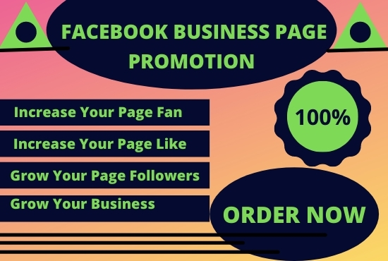 I will run and manage Facebook ads campaign.
