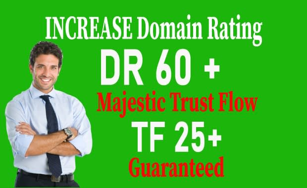 I will Increase DOMAIN RATING 50 plus TF15+