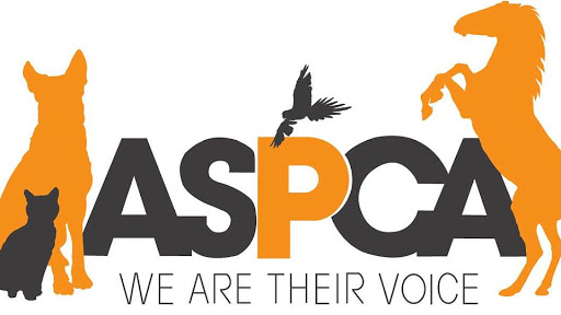 you will get your pet and animals content publish on ASPCA have high DA AND PA