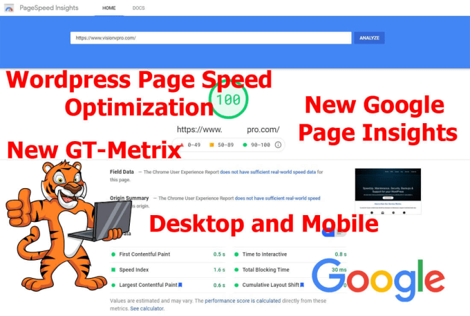 I Will Optimize your WordPress Site for for google page insights