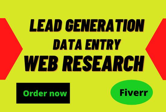 I will do Linkedin Lead Generation and data entry