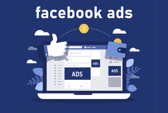 I will setup and manage facebook ads campaign for you