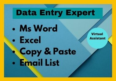 I will be your professional Data Entry virtual assistant.