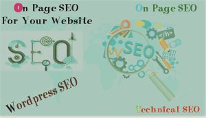 I will do On Page SEO Complete meta description/ image alt text and meta title.