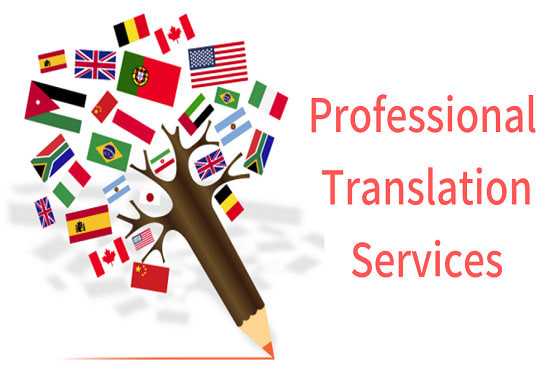 I will professionally translate from english to spanish, german and urdu and vice versa