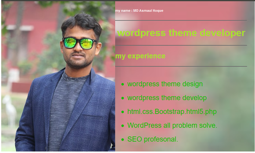 I will do WordPress design with Premium theme and business website.