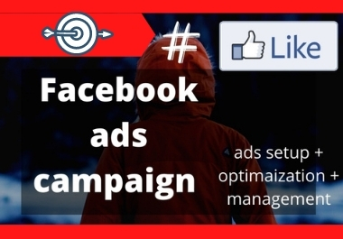 I will do manage and setup fb advertising,  fb ads campaign,  fb ads manager