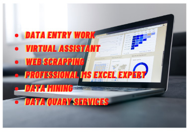 Data entry professional MS excel automation and virtual assistant