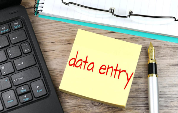 I will entry your data professionally