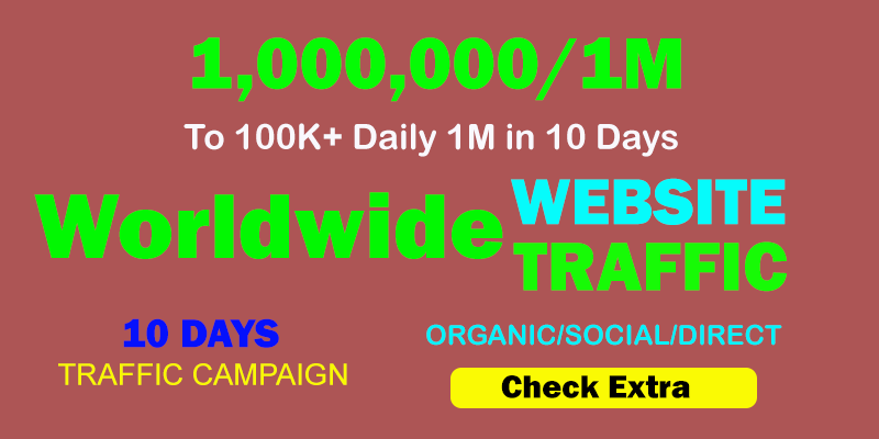 1,000,000 Worldwide TARGETED Organic Web Traffic to your website within 10 Days.