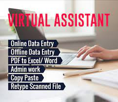 I will do professional Virtual Assistant,  Web Research,  Typing,  Data Entry.