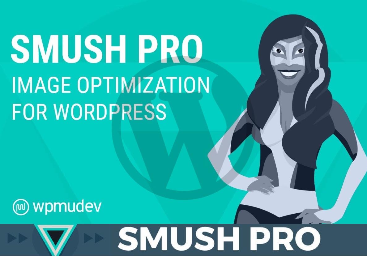 I will install Smush Pro plugin on your Wordpress Website