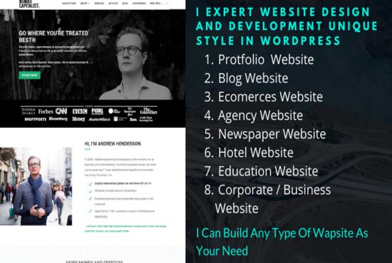 I will Create Any type of website using WordPress
