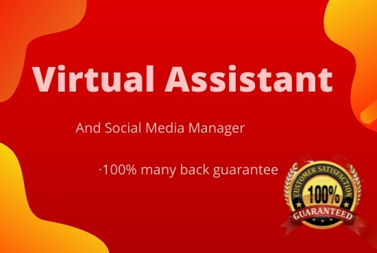 I will do Professional Social media manager and virtual assistant