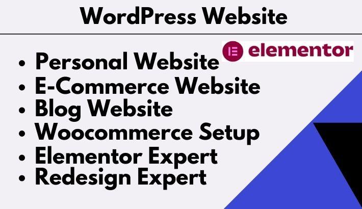 I will responsive wordpress elementor expert website design popular theme