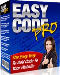 This software include any script or code into your entire website without any changes of your webpag
