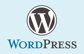 Professional WordPress site. com. net. es. pk and others