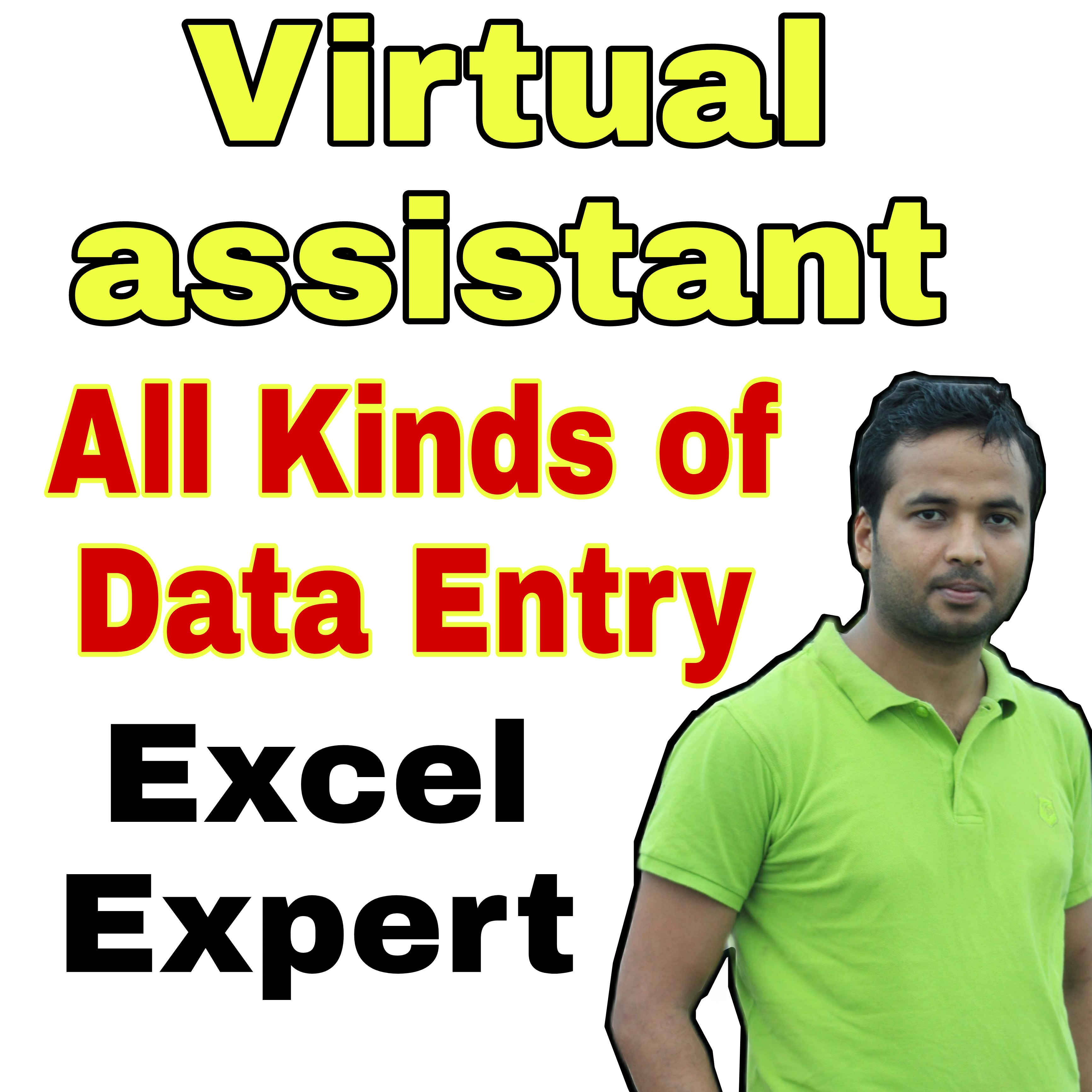 I will be your virtual assistant for excel data entry