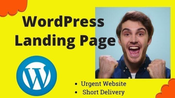 I will fix bug and redesign landing wordpress website