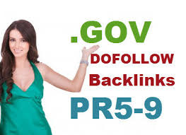 20 dofollow High quality USA Gov backlink