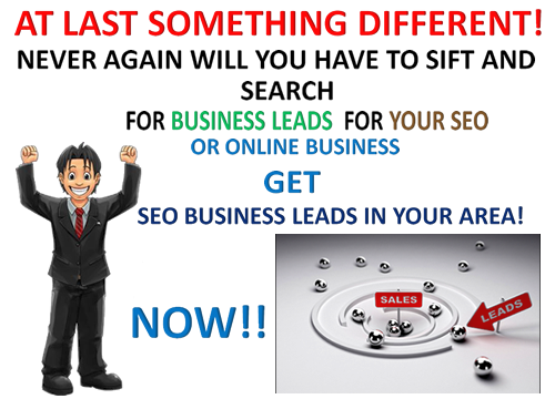 Get Laser Targeted Business SEO Leads - for any type of business within any ZIP /Postal Code