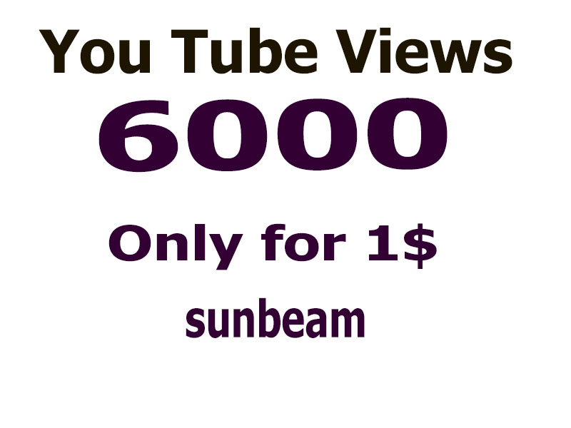 deliver you 6000 real human yout_ube vie_ws only