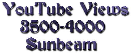 deliver you 3500 -4000 real human yout_ube vie_ws only