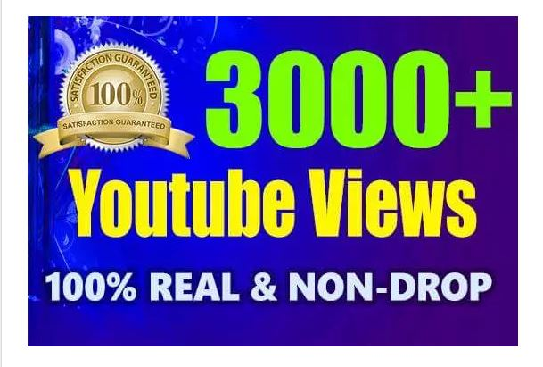 2000-10000 All in one YOUTUBE and Social media video and website promoting Services