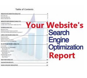 Full SEO Report Refering,  Backlinks,  TLDs,  Keywords