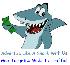 Provide 10000 Geo & Category Targeted Website Traffic Visits