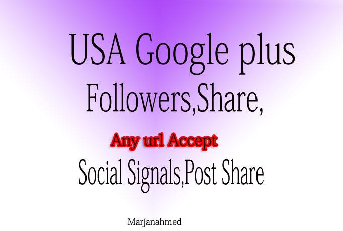 Add 100+ USA base Google Plus Vot or Circle or Follow