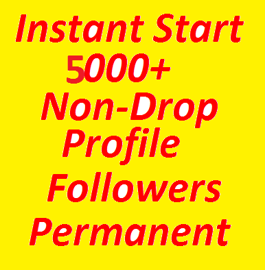 Instantly-Start-1000-High-Quality-Profile-Followers-Fully-Safe