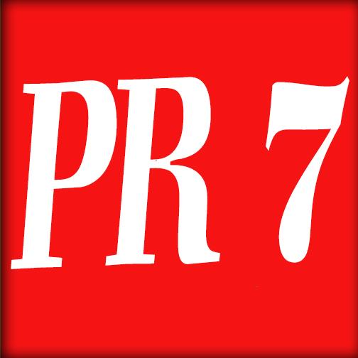 Panda Safe Manually Create  2XPR7, 5XPR6, 10XPR5, 15XPR4, 20XPR3, 40XPR2 Actual PR Blog comments