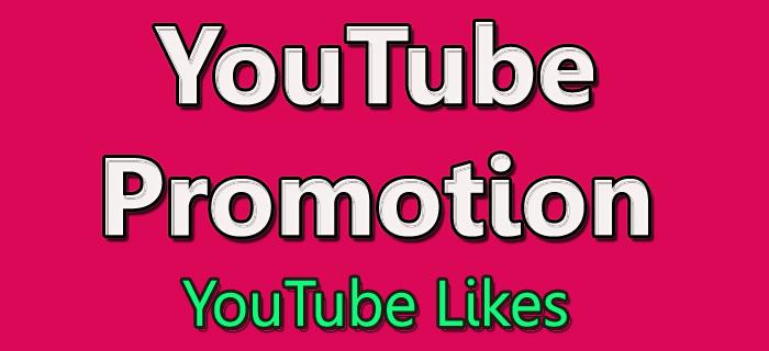 Provide you 500+ HQ Youtube Likes