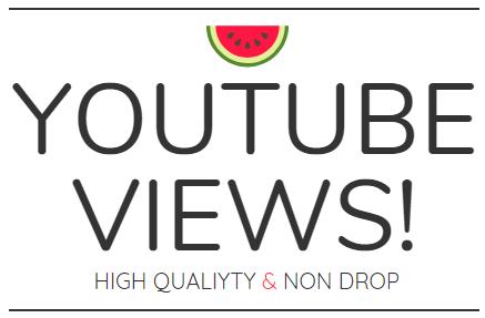 5500+ quality non drop views