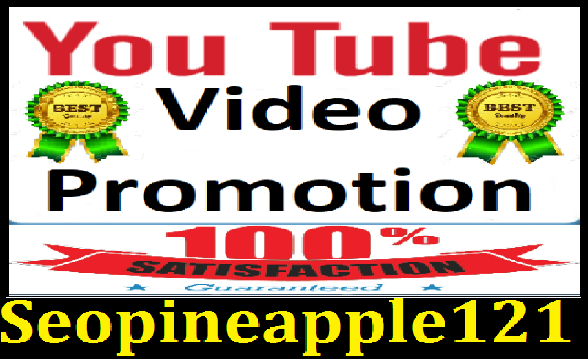 YouTube Video promotion with Lifetime Non Drop Guaranteed