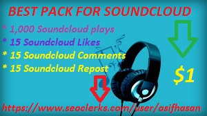 1000 soundcloud plays with 15 likes+repost+comments within 24 hours only