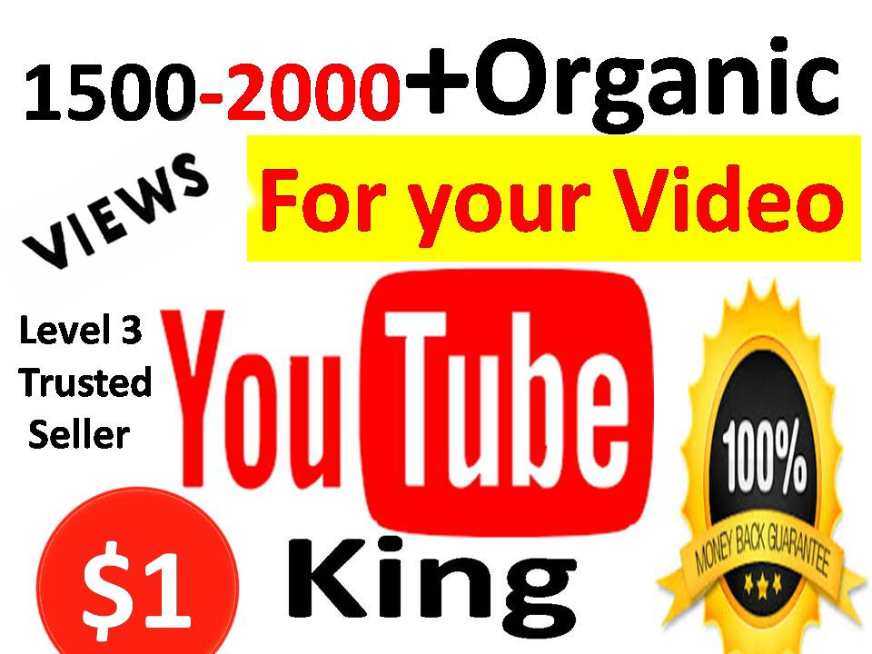 Get 2500-3000 High quality YouTube Video Views with 6-8 Hours Delivery or 20 Custom Comments Or 50 Real Subscribers