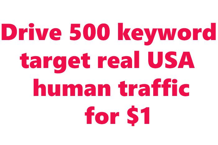 send-10000-human-traffic-from-google-yahoo-etc