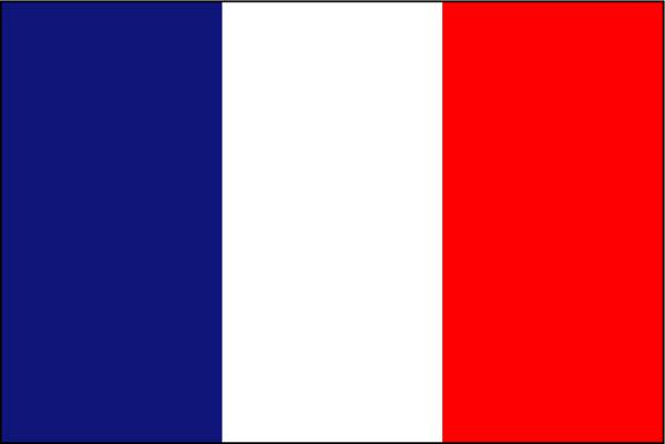 10000+ france Low bounce rate targeted website traffic for