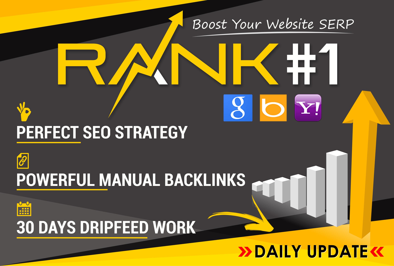 Rank Your Website on Google, 30 Days SEO Backlinks Manually