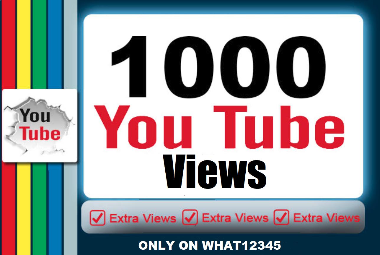 1,000+ High Quality Views