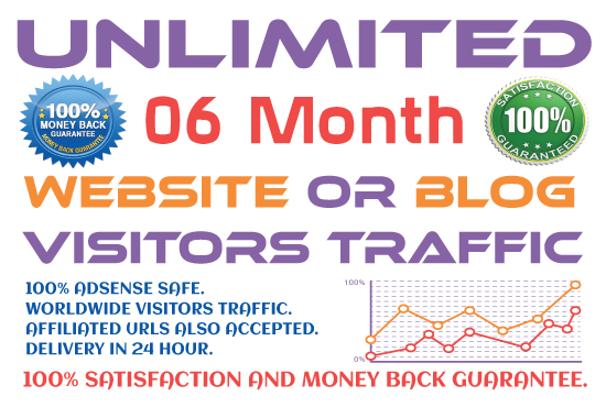 06 Month Website Promotion and Drive Visitors Traffic