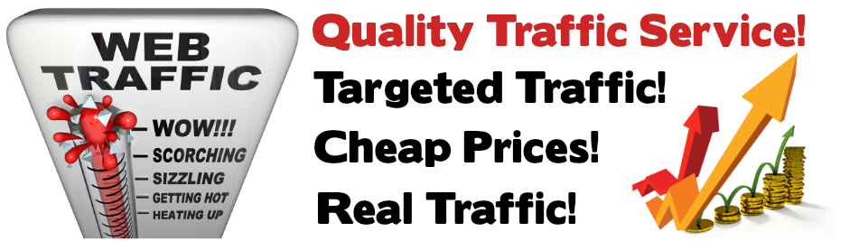 10000+ daily visitors for 6 month 1,800,000+ total visitors, Keyword targeted, Organic traffic
