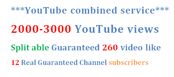 2000-3000 YouTube views + 260 video like +Real 12 subscribers