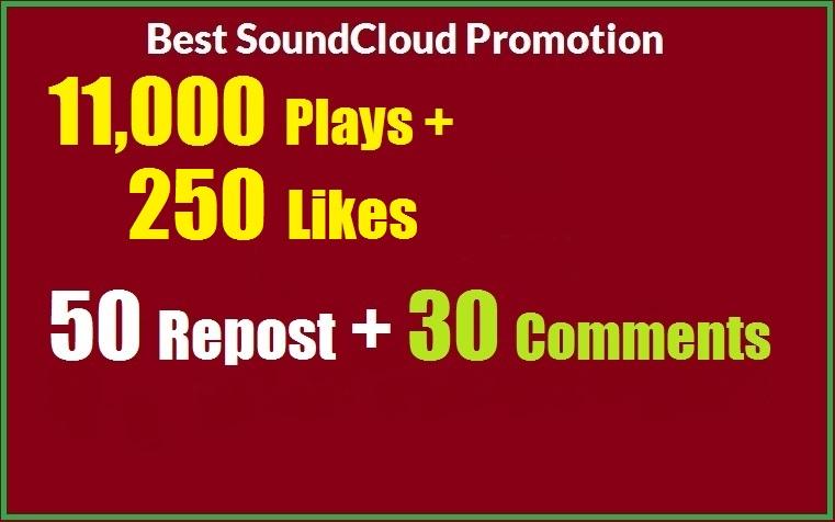 11,000 SoundCloud Plays 250 Likes 50 repost 30 comments