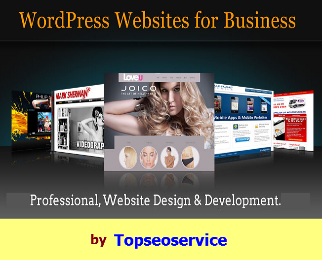 Create a Professional looking Wordpress website for your Business