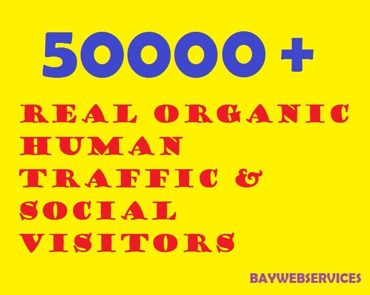 50000 Real Human Traffic & Social Visitors 10 days
